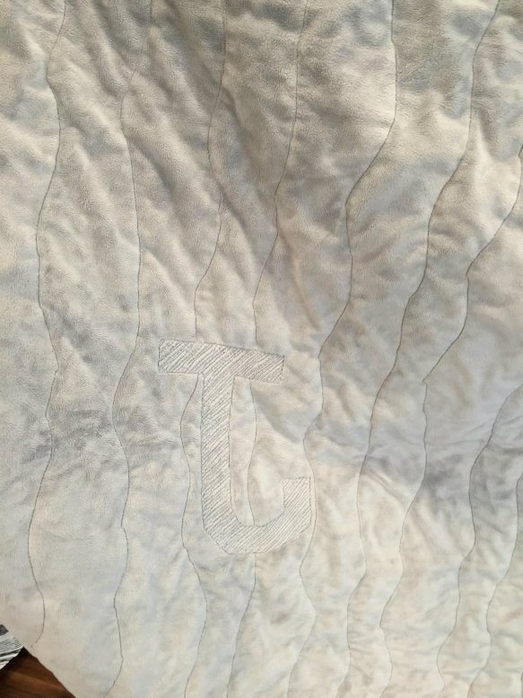 charlene flannel quilt back minky j
